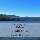 Family Day Trips Melbourne: Healesville & the Yarra Ranges
