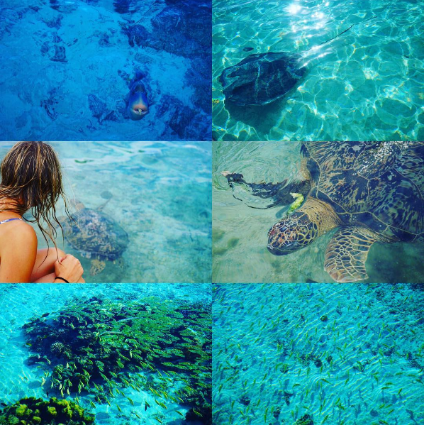 moorea-island-diving