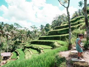 bali-prices-cost-of-travel