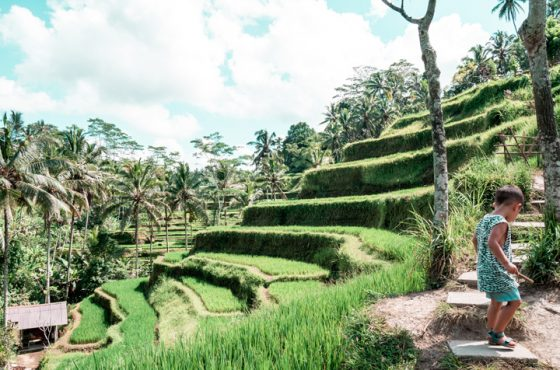 A Complete Bali Price Guide for Families: Breakdown of Travel Costs