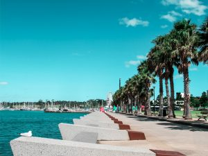 best-geelong-attractions