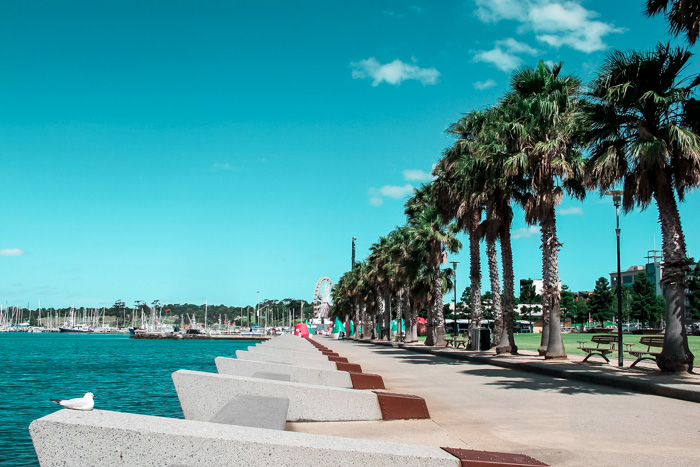 geelong-attractions-waterfront