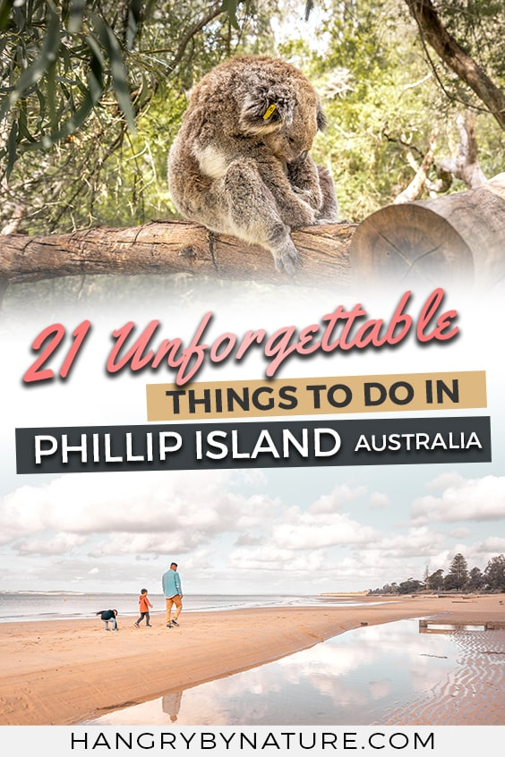 things-to-do-in-phillip-island