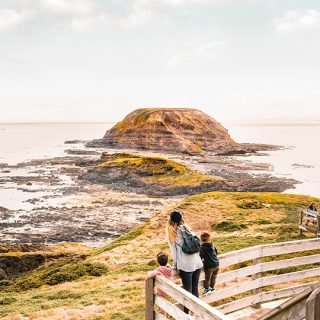 phillip-island-attractions-nature-parks